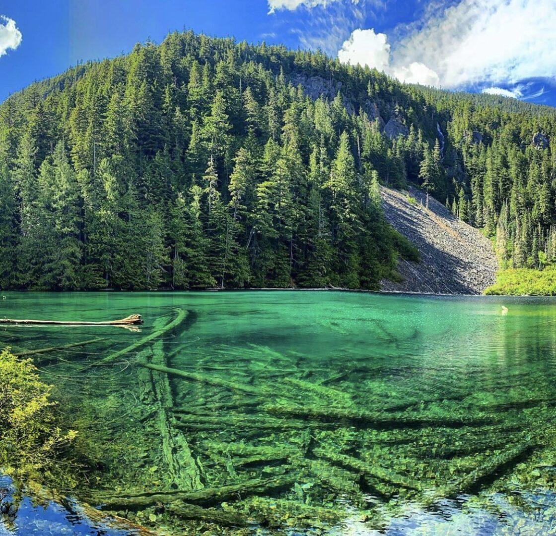 Greendrop Lake swimming