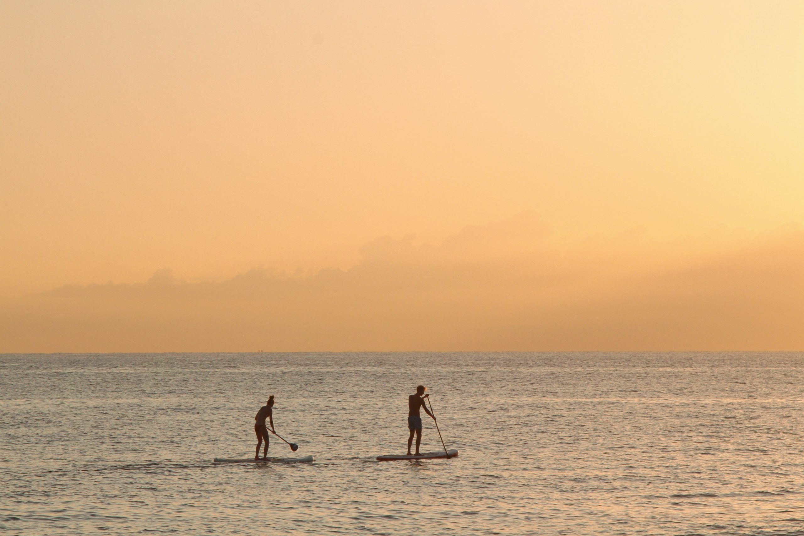 Vancouver Paddleboarding
